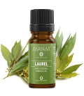 Laurel pure essential oil
